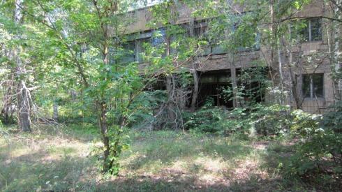 Chernobyl (15)