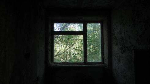 Chernobyl (32)