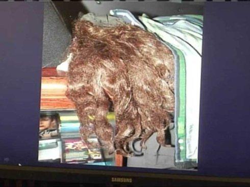 ariel-castro-wig